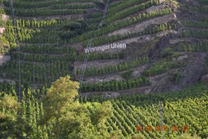 Mosel Weinberg mit Name