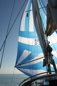 Port-Saint-Louis Spinnaker Testfahrt